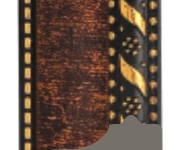 SA 509-20
